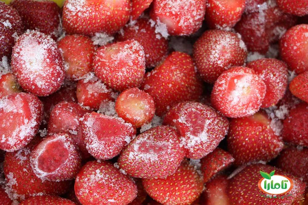 میوه جات منجمد تامارا