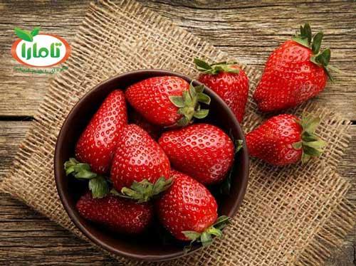 strawberry-fruit-dog-treat-ingredients